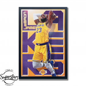 LA Laker's champion LeBron James